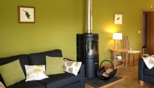 Woodburner in the living area
